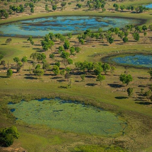 br_al_pantanal