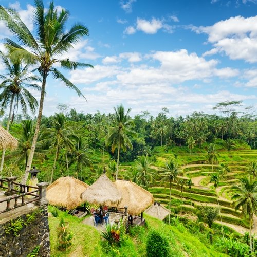 Beste van Bali
