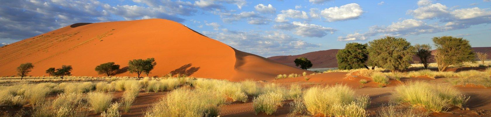De rode zandduinen van Sossusvlei