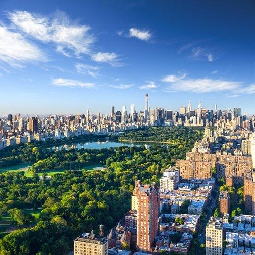 us_al_newyork.jpg