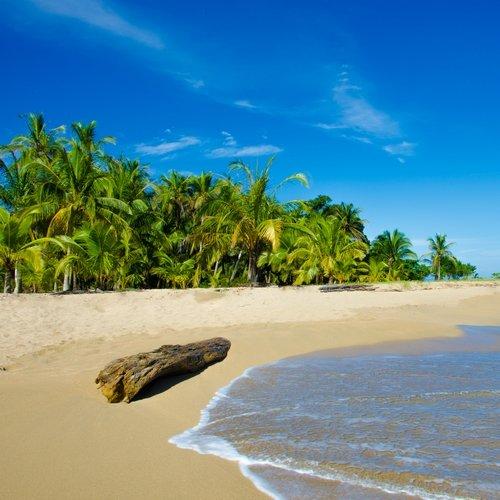 NRV: Het Beste van Costa Rica per 4WD