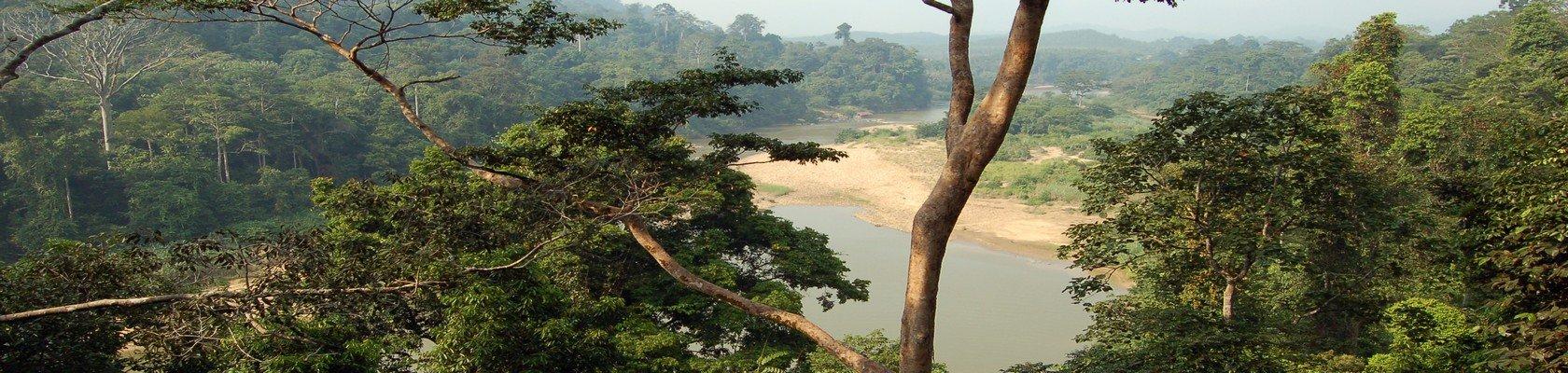 Logeren in het regenwoud, Taman Negara