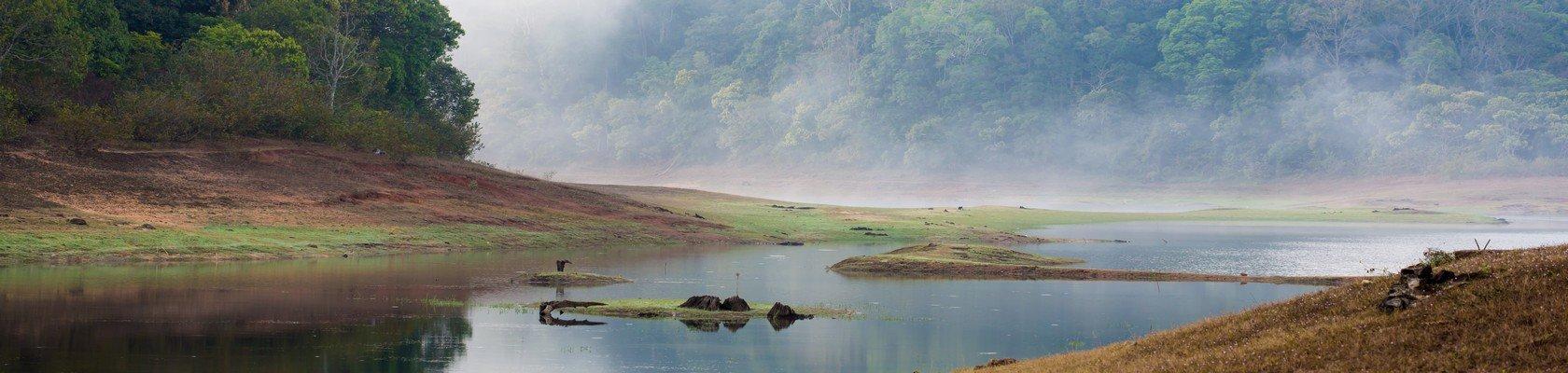 Uniek wildlife reservaat Periyar Nationaal Park