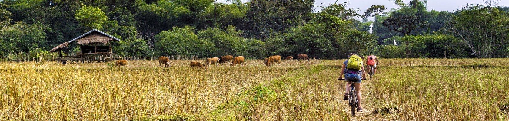 Fietsen over het platteland