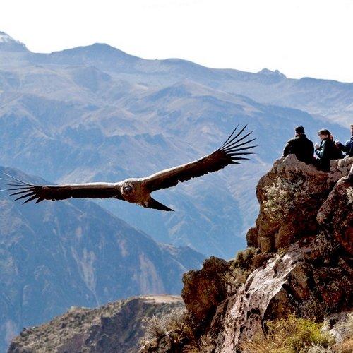 Reizen Peru