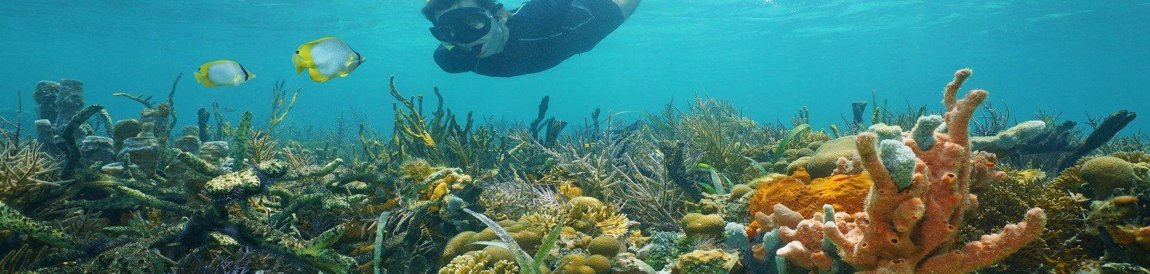 Snorkelen bij Amed