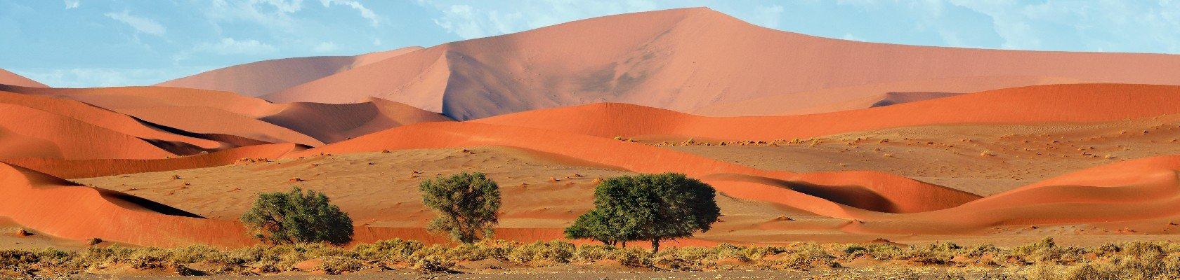 Rode duinen bij Sossusvlei