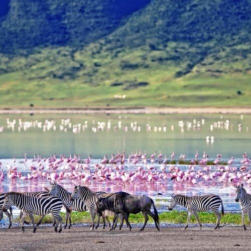 NRV: Onbekend Tanzania & Zanzibar