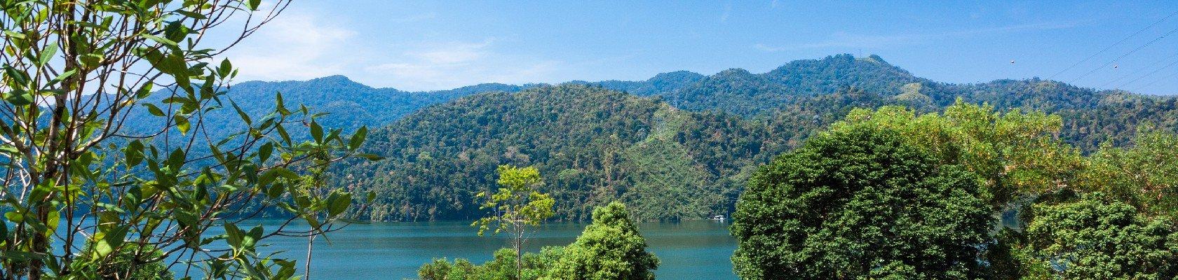 Bélum Rainforest