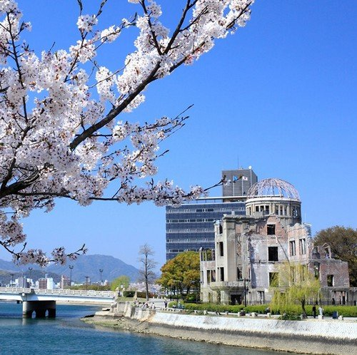 Cherry Blossom dating agentschap