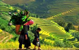 Kleurrijke stammen in paradijselijk Sapa