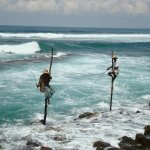 Paalvissers bij Galle