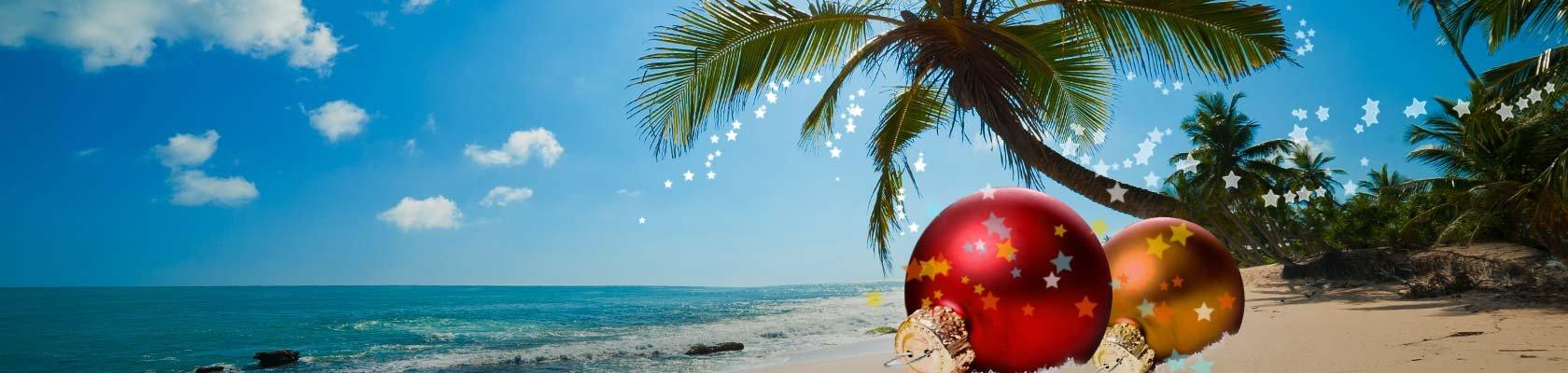 Onze reizen tijdens de kerstvakantie