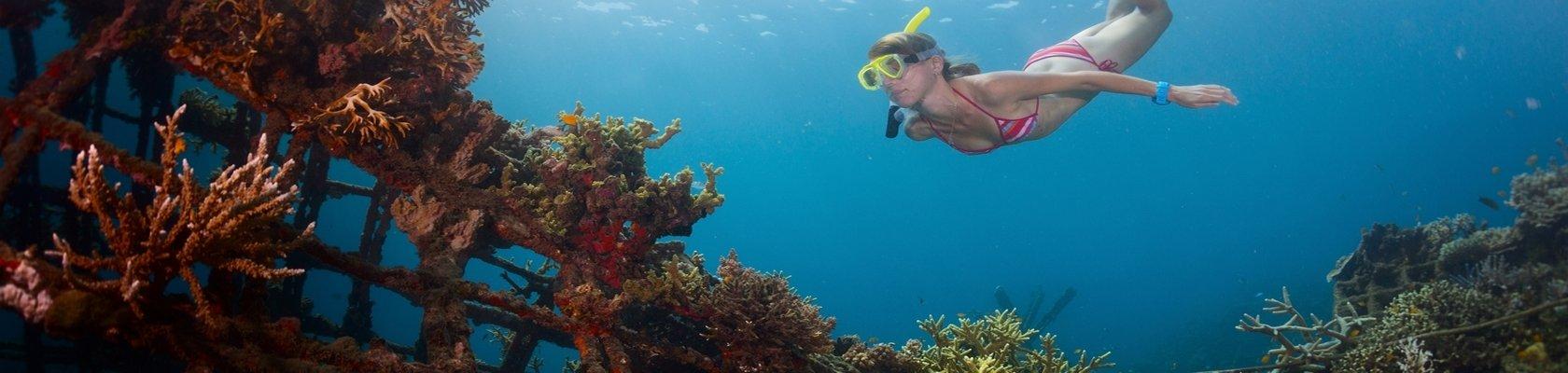 Snorkelen en duiken bij Pemuteran