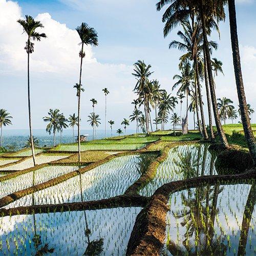 Sumatra, Java, Bali, Gili & Lombok
