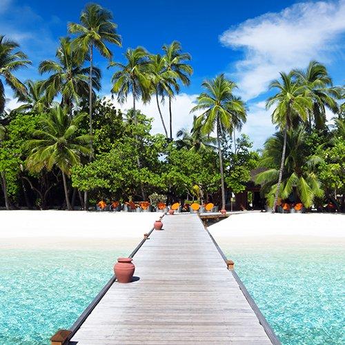 Sri Lanka & de Malediven afbeelding