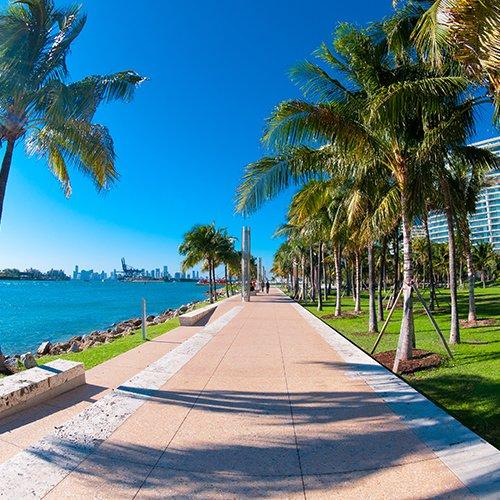NRV: Het Beste van Florida