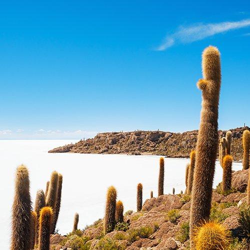 Hoogtepunten van Bolivia & Peru