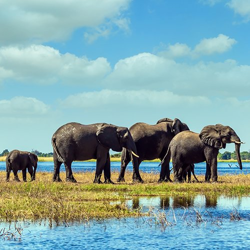 Noord-Namibië, Victoria Falls & Botswana