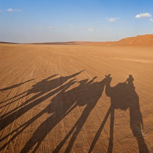 Slapen onder de Sterren in Oman