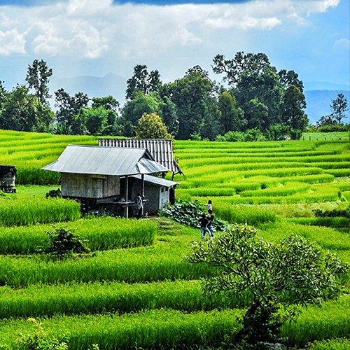 NRV: Cultureel Thailand