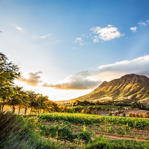 Hoogtepunten van Zuid-Afrika