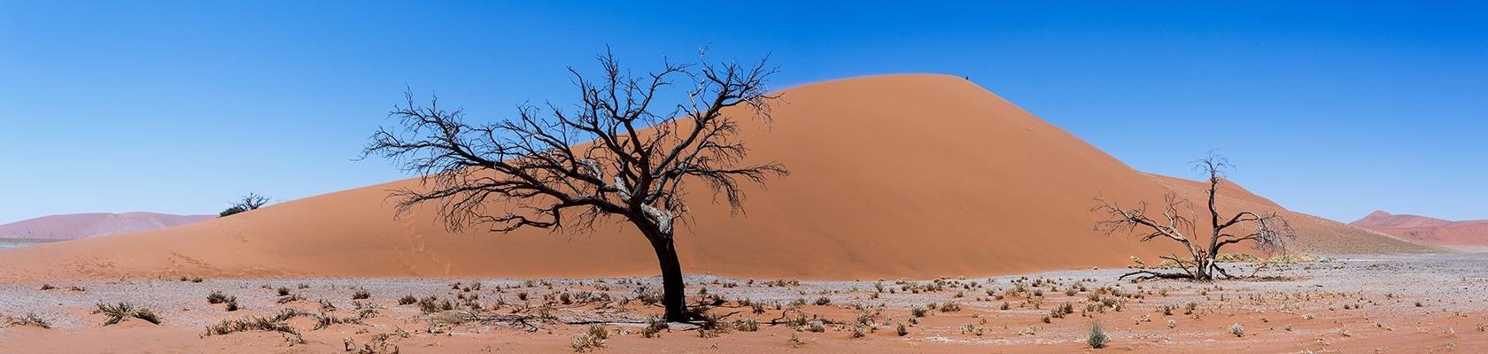 Individuele rondreizen Afrika - Namibië