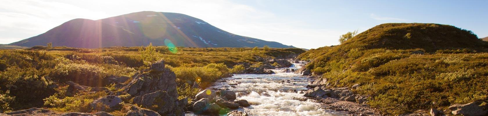 Dovrefjell-Sunndalsfjella Nationaal Park