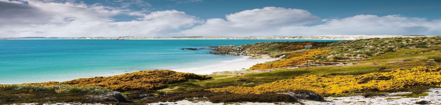Falklandeilanden