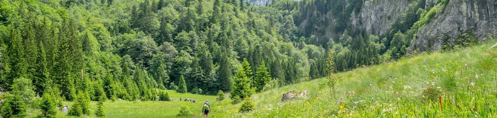 Sutjeska Nationaal Park (Bosnië-Herzegovina)