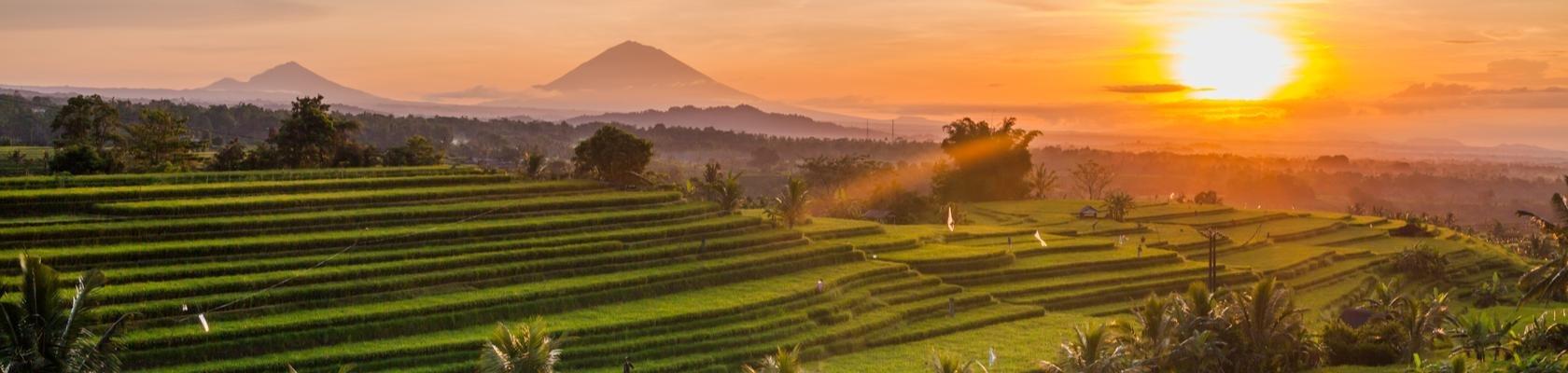 Zonsopkomst over de rijstterrassen in het binnenland