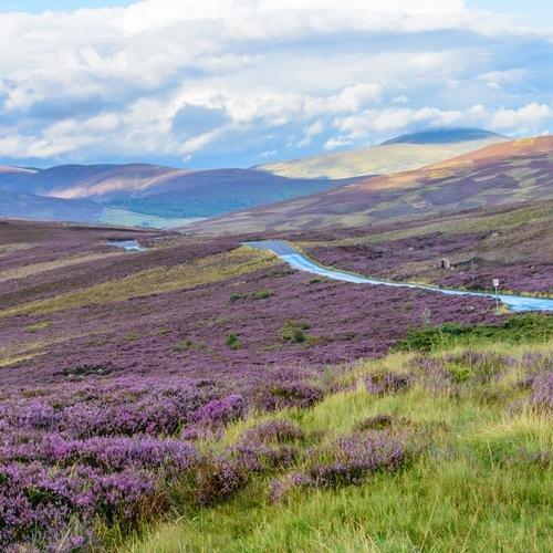 Schotland Cairngorm National Park